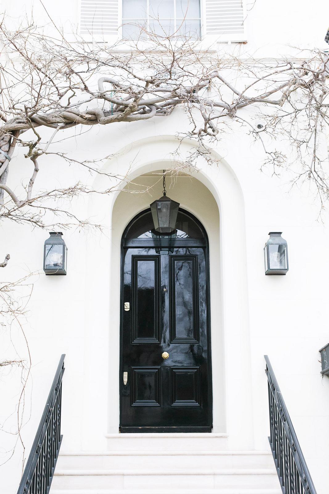 White Front Door Texture